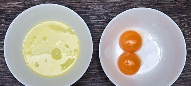Белки и желтки: сколько хранятся в холодильнике, можно ли замораживать