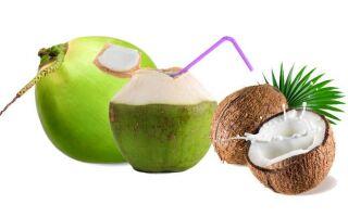 Как выбрать и сохранить кокосовый орех