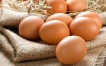 Срок годности сырых и вареных куриных яиц в холодильнике и без него