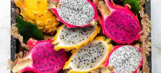 Что такое драконий фрукт? Как выбрать и сохранить восхитительный тропический фрукт