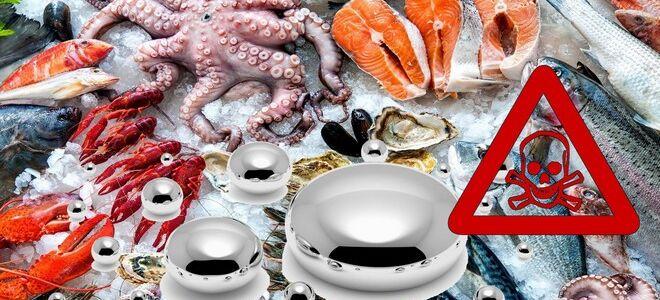 Содержание ртути в рыбе, насколько это опасно?