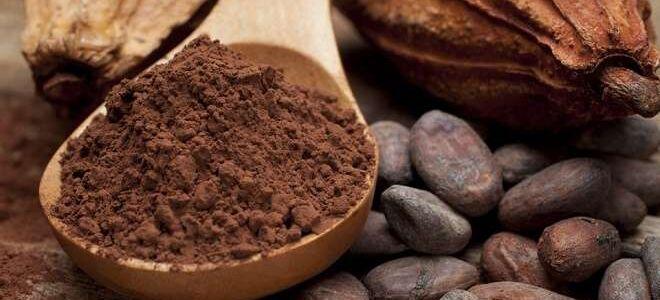 Какао-порошок: виды, сроки годности и условия хранения