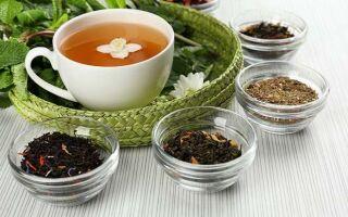 Чай: сроки годности в зависимости от сорта. Как хранить в сухом и заваренном виде