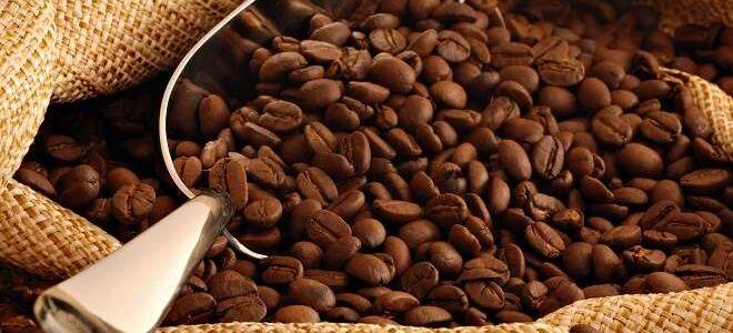 Кофе в зернах, молотый и растворимый: как, в чем и сколько хранить