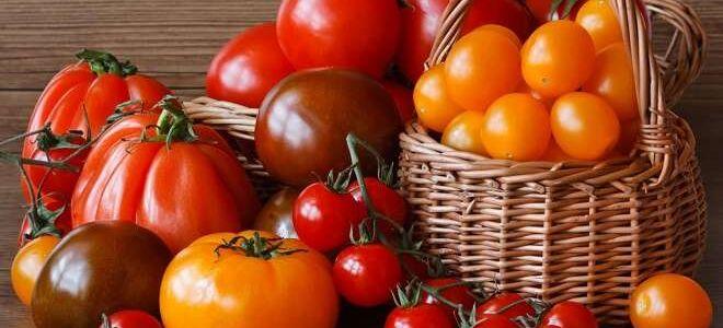 Спелые помидоры: как сохранить их свежими и переработать на зиму