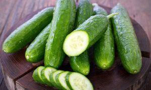 Свежие огурцы в сезон и на зиму: как хранить в холодильнике и без него