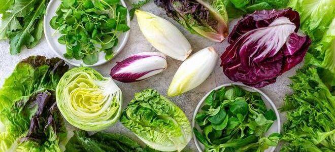 Как долго сохраняется салат? Как его хранить и можно ли заморозить?