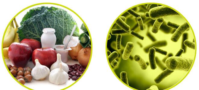 Пробиотики и пребиотики, что нужно для здоровья?