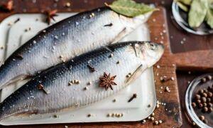 Селедка в холодильнике: простые рецепты долгого хранения