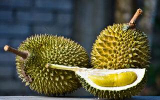 Дуриан – запрещенный фрукт, который воняет мусором