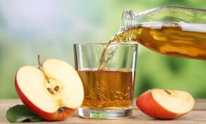 Как хранить эликсир молодости и здоровья – яблочный сок