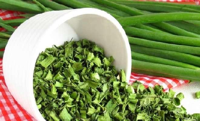 сушка зеленого лука