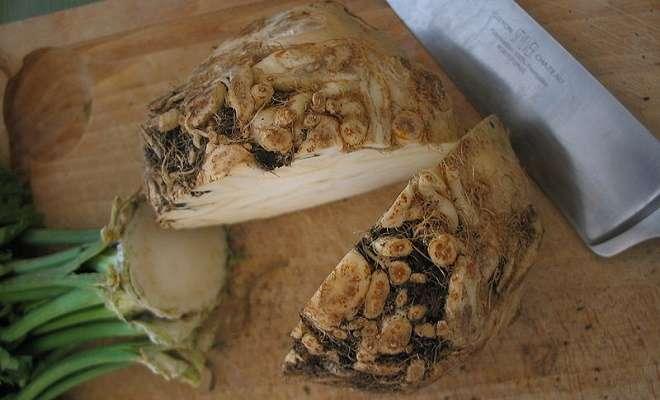 разрезанный корень сельдерея