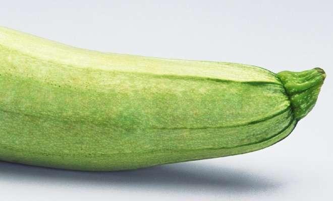 плодоножка кабачка