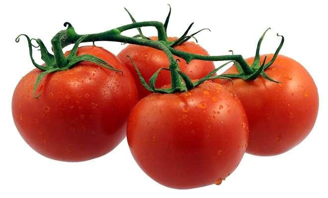томат - это ягода