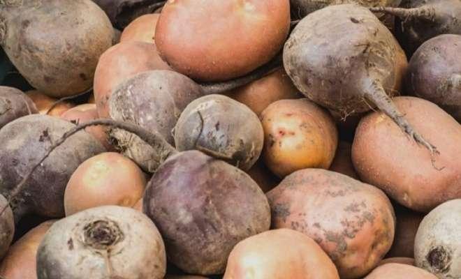 картофель и свекла