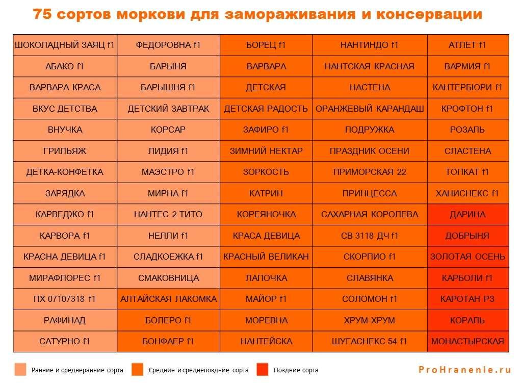 сорта моркови для заморозки и консервации (таблица)