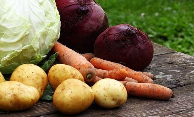 свекла, морковь, картофель и капуста