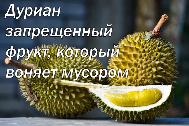 Дуриан - запрещенный фрукт, который воняет мусором